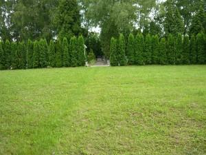 Sektor hřbitova záložní